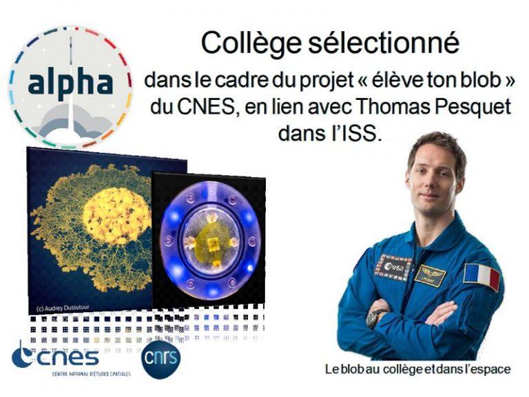 Le collège Jean Monnet en direct de la mission Alpha avec Thomas Pesquet